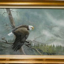 Original Bald Eagle Painting by Norman Green